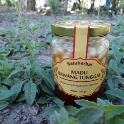 Madu bawang putih Lanang ( tunggal / laki) lokal